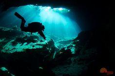 Cenote diving in Jardin de Eden.