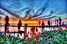 Balboa Peninsula, Newport Beach, California