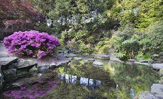 Jeli Arborétum - Léka - Kőszeg 24% | Bónusz Brigád