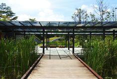 Stephen Caffyn Landscape Design Landscape Architecture, Landscape Design, Garden Design, Singapore Botanic Gardens, Visit Singapore, Pallets Garden, Wayfinding Signage, Small Space Gardening, Entrance Gates
