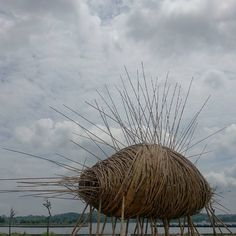 ip konstruk ip_konstruk cocoon by alvin tan malyooying