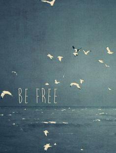 be free inspirational typography words sea birds flight vintage blue waves nature Text art Inspirational Quotes About Love, Self Love Quotes, Great Quotes, Positive Inspiration, Typography Inspiration, Inspiration Quotes, Motivation Inspiration, Free Art Prints, Illustrations