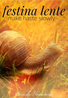 Make Festina Lente: Make Haste Slowly a central principle of your homeschool.