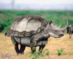 unglaubliche tierwesen