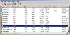 Program to monitor Internet activity in Windows