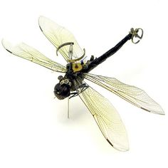 Artist Mike Libby uses real insects and mechanical parts to make his amazing mechanical bugs.