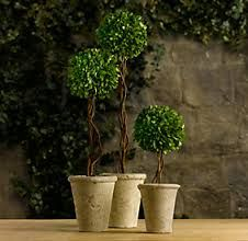 Image result for topiaries