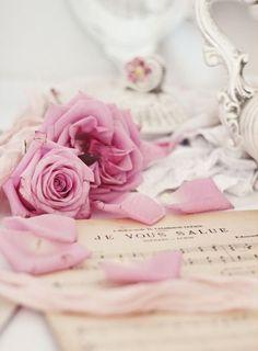 : #floral #stills #pastels #inspiration #photography xo ❀ ♥ . . ✿⊱╮. ★ . . ╭✿⊰ ♥ . . ★ . . ♥ ☽★☀☆☾ ༺♥༻ |