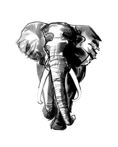 African elephant black white painting canvas ink by AWildLife
