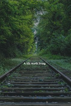 What's the one thing you need to know to build a life truly worth living?