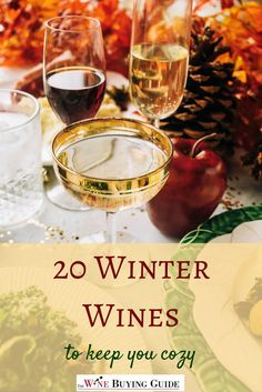 Every season is perfect for wine, but winter seems to be an especially great time of year to open a bottle (or two). We have great wine recommendations for heartwarming red and white wines, with 20 Winter Wines to Keep You Cozy. Wine Drinks, Alcoholic Drinks, Just Wine, Best Red Wine, Wine Auctions, Buy Wine Online, Wine Delivery, Wine Fridge, Wine Tasting