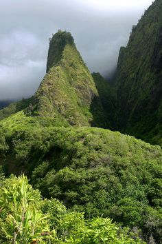 Lush Lao Valley - Maui, Hawaii, wow, we live here half the time, I forget that it too is wonderful