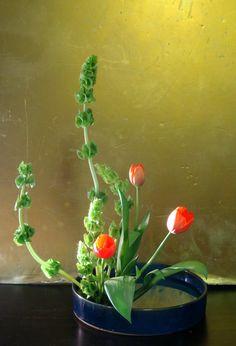 Ikebana Moribana | krunkstar | week 42 – ohara ikebana – moribana – upright style