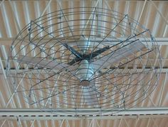 Industrial Ceiling Fans | went to the Mall and saw this Dayton Industrial Ceiling Fan in a ...