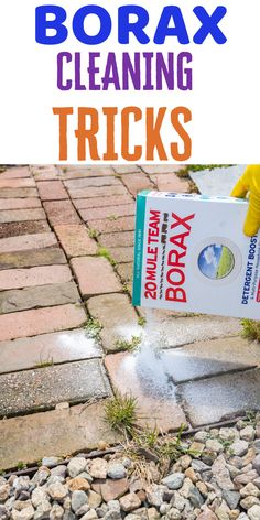 Using borax to clean some areas in your house will become so easy. specially in your bathroom. You can use it in the toilet or shower to clean it, even can be use to kill insects. Borax Cleaning, Diy Home Cleaning, Household Cleaning Tips, Homemade Cleaning Products, Cleaning Recipes, House Cleaning Tips, Green Cleaning, Natural Cleaning Products, Spring Cleaning