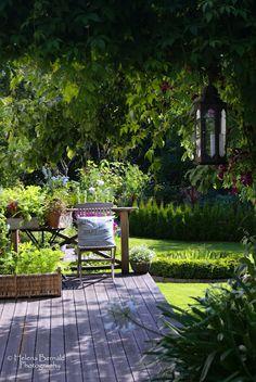 O Swenglish Home: Jardim de Charlotte