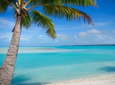 Paradise... Spent 3 days on this beautiful island Aitutaki with its blue lagoon filled with colourful fish, white sandy beaches and tiny islands. #pacificbeachlocals #sandiegoconnection #sdlocals #sandiegolocals - posted by John Mills  https://www.instagram.com/john_mills_nz. See more post on Pacific Beach at http://pacificbeachlocals.com