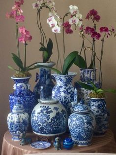 Blue and white pottery with orchids Blue And White Vase, White On White, Enchanted Home, Chinoiserie Chic, Chinoiserie Wallpaper, Blue China, Love Blue, Ginger Jars, White Decor