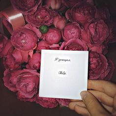 Love Flowers, Beautiful Flowers, Beautiful Pictures, Foto Snap, Luxury Hair, Flower Aesthetic, Couple Photography, Sweet 16, Gifts