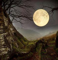 Hunter's Moon Cielo maravilloso!