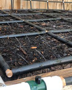Vegetable Garden Planning, Backyard Vegetable Gardens, Veg Garden, Vegetable Garden Design, Small Garden Design, Water Garden, Garden Hose, Vegetables Garden, Garden Watering System