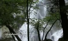 Stock Footage - Stock Video Backgrounds - Waterfall 0301 #Stock #Footage #Video #Backgrounds #Waterfall
