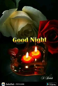 Good Night Thoughts, Lovely Good Night, Good Night Love Quotes, Hindi Good Morning Quotes, Good Night Gif, Good Night Messages, Good Night Sweet Dreams, Good Night Image, Goodnight Quotes For Friends