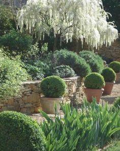 31 Awesome Mediterranean Garden Design Ideas For Your Backyard - Garden Back Gardens, Small Gardens, Formal Gardens, Outdoor Gardens, Mediterranean Garden Design, Buxus, Garden Cottage, Garden Living, White Gardens