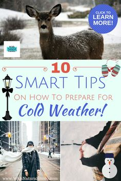 Before the height of Winter hits your area, here are 10 tips on how to prepare for cold weather. Home Safety Checklist, Emergency Preparedness Checklist, Emergency Kits, Safety Tips, Weather Blog, Cold Weather, Winter Car Kit, Alone Life, Glitter Balloons