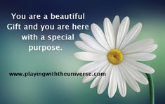 You are a beautiful Gift You were born for a special purpose, so acknowledge the gift that is you and let that be the thought you hold in the back of your mind always, regardless what is going on around you. You are a powerful creator and the Universe wants you to know that it has your back!  It's a new world and we all live in together. You have come through hardships