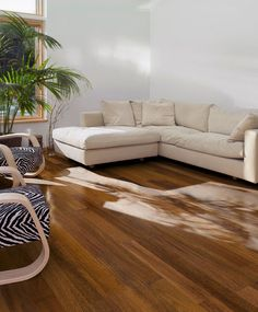 Why you should to buy engineered hardwood flooring This is beautiful! Engineered Hardwood Flooring, Hardwood Floors, Light And Space, Window Coverings, Own Home, New Homes, Couch, Living Room, Kitchen
