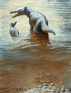 """Maiacetus - James Gurney - (Maiacetus (""""mother whale"""") is a genus of early middle Eocene (ca. 47.5 mya) cetacean from Pakistan. These whales gave birth on land."""