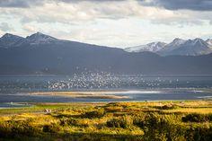 Ushuaia, Argentina Ushuaia, Patagonia, London England, Paris France, South America, Road Trip, Places To Visit, Bucket, Sky