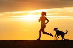 5 divertidas formas de hacer ejercicio con tu perro