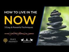 """Stressed about life? The antidote is to learn how to """"live in the now."""" These 3 strategies will quickly put all your worries to rest. Free Facebook, Today Episode, Peaceful Life, Ordinary Lives, Live In The Now, Then And Now, Yoga Meditation, Rest, Inspirational"""