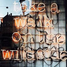 Take a walk on the wild side.. Go on, we dare you!