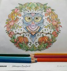ColoringWithCanon JohannaBasford FallOwl More Information Dream World Coloring Book