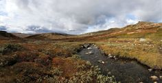 Forollhogna, Norway