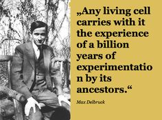 """""""Any #living #cell carries with it the #experience of a #billion years of #experimentation by its #ancestors"""". Max #Delbrück"""