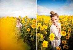 B : North Shore Sunflower Fields » Memories Aquatic