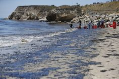 Volunteers carried buckets of sludge from the oil slick at Refugio State Beach. | Stunning Photos Show Scope Of 105,000-Gallon Oil Spill On California's Coast - BuzzFeed News