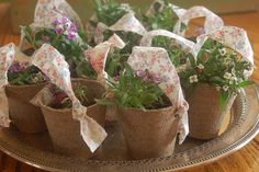 i love this idea to send garden/herb party guests home with...fill with different herbs ready to plant!
