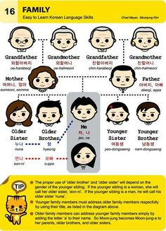 Korean Language (basic - family tree)