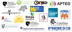 Members of INCA, the International NET Cancer Alliance. NET Cancer organizations, or cancer groups with specific activities focused on NET, that implement a range of activities relating to NET support, education, research and/or advocacy.