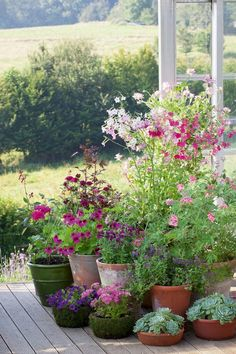 How to plant in pots and containers part summer - Garden Care, Garden Design and Gardening Supplies Summer House Garden, Garden Cottage, Garden Pots, Potted Garden, Herbs Garden, Outdoor Potted Plants, Small Cottage Garden Ideas, Summer Houses, Garden Cart