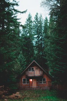 west coast forest cabin