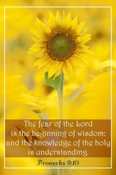 "Proverbs 9:10 ""The fear of the Lord is the beginning of wisdom. Knowledge of the Holy One results in understanding."" NLT"