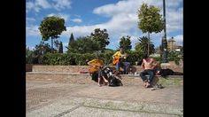 Granada 2013 Entre musicantes y saltimbancos