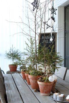Kukkala: Jouluinen metsä terdellä + piparikylä
