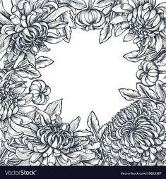 Frame with hand drawn chrysanthemum flowers vector image on VectorStock Chrysanthemum Drawing, Chrysanthemum Flower, Birthday Card Drawing, Birthday Cards, Colorful Flowers, Exotic Flowers, Purple Flowers, Flower Line Drawings, Surreal Artwork